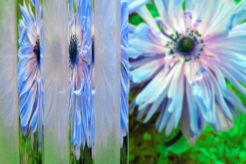 decorative ornamental glass flutes sandblasted